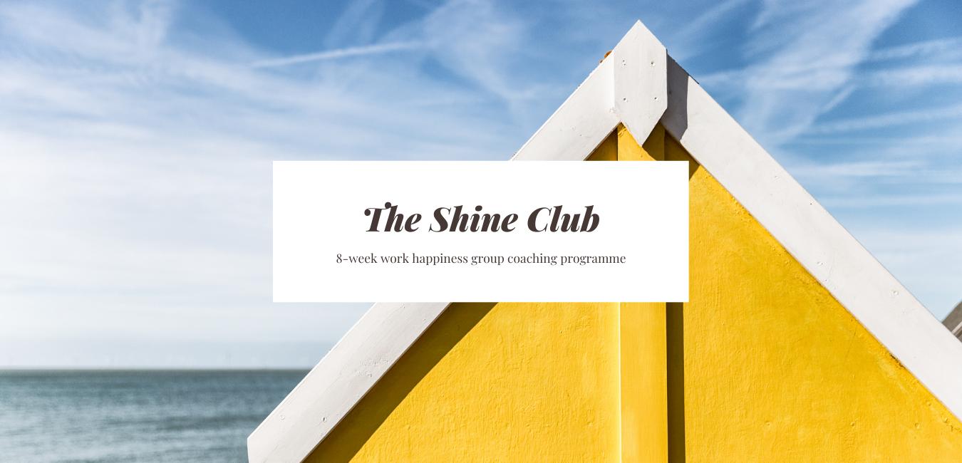 The Shine Club group career coaching programme