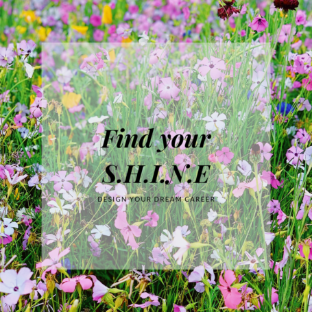 Find your shine - design your dream career