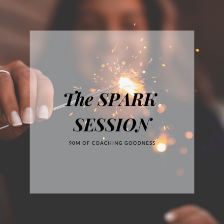 THE SPARK SESSION